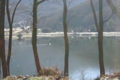 07.12.2010 - Lago Laceno