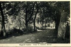 Viale G. Battista Abbiosi