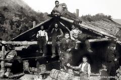Teleferica per il trasporto di legname