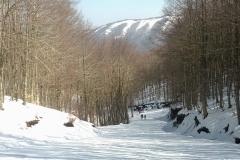 sciare-art-1