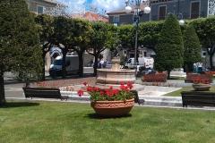 piazzaart